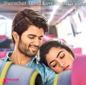 I Love You Status Video Sharechat