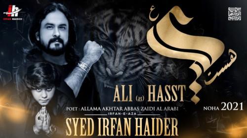 Ali Hasst Noha Status Video Irfan Haider