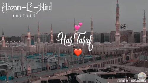 Bibi Amina Kay Phool Allah Hi Allah Naat Status Video